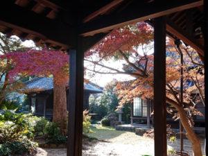浄慈院の紅葉の写真